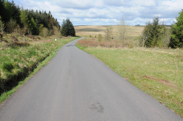 Road through Glasfynydd Forest