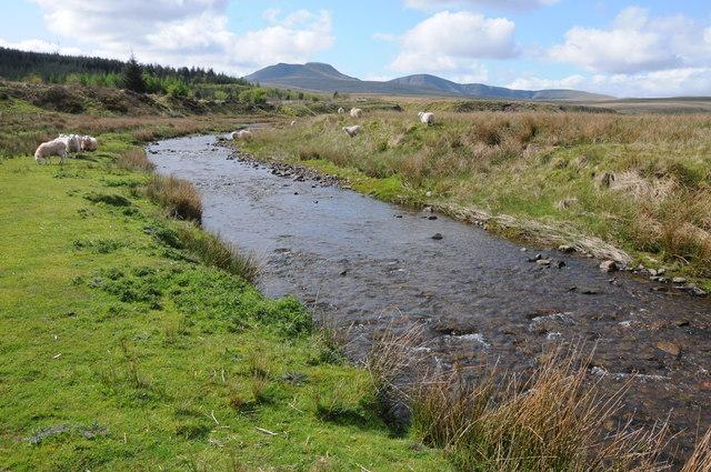 Afon Wysg/River Usk
