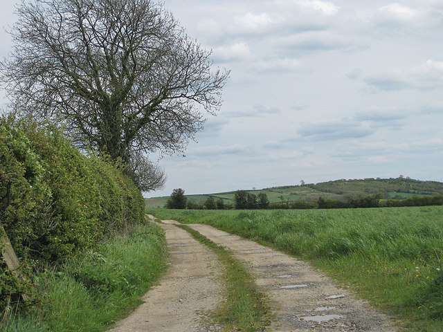 Track East from Terrington South Bank