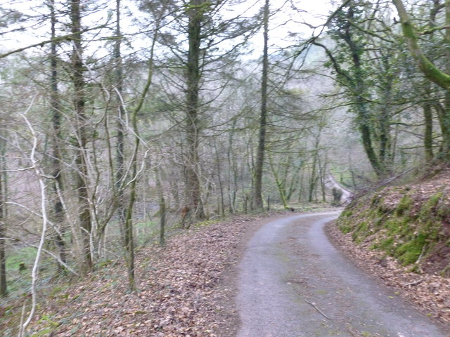 Access road and footpath leading to Coed Las-fach