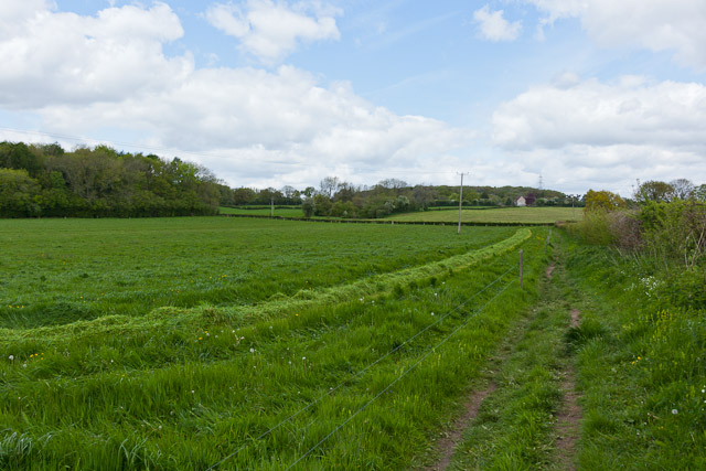 Field and footpath east of High Wood