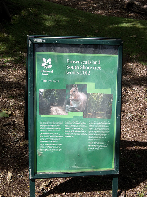 Brownsea Island South Shore tree felling work - information board