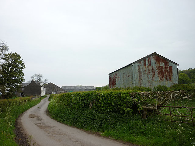 The lane into Low Low Wood