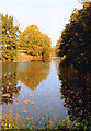 SP0175 : Autumn Colours, Pool Cofton Hackett by Roy Hughes