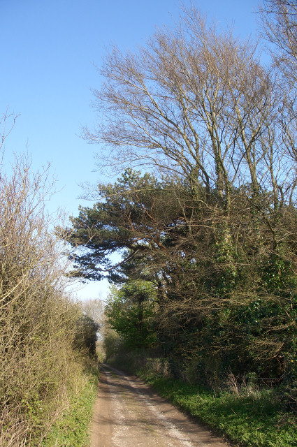 Track south east of Tythegston (2)