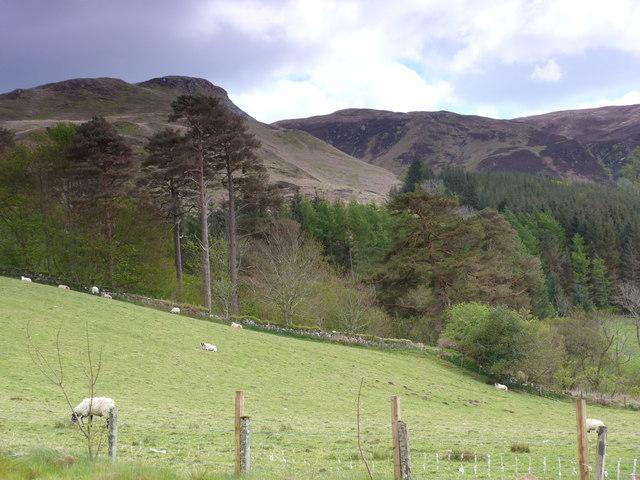Cnoc na Ceardaich, above Kilmelford