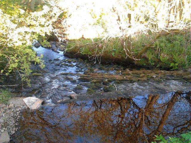 Milnholm, Weir [2]