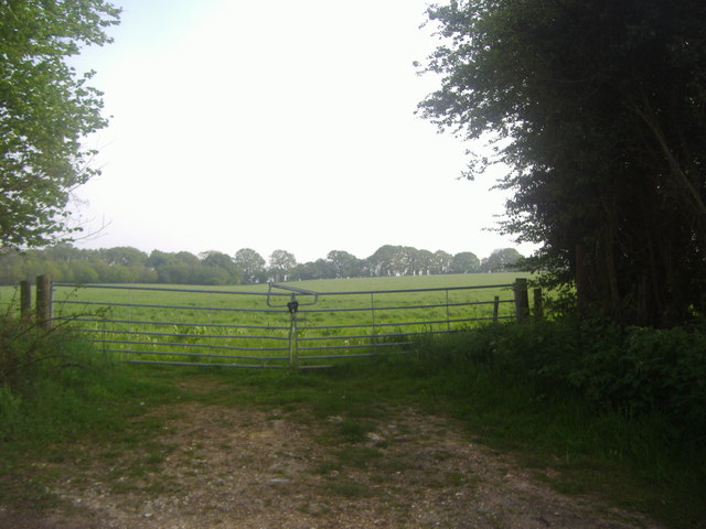 Entrance to field on Waltham Lane, Overton