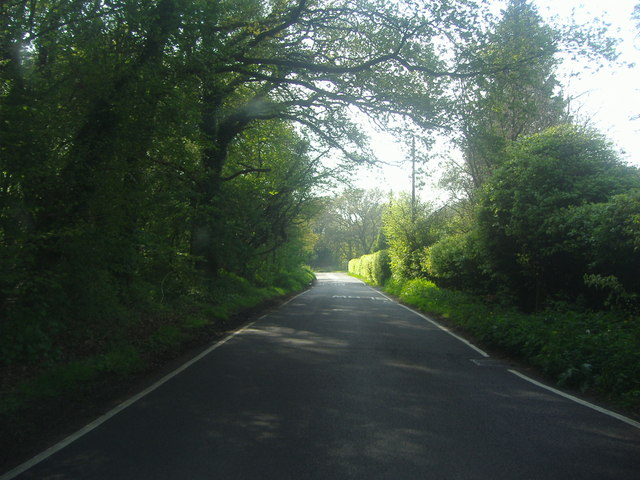 Berrydown Lane