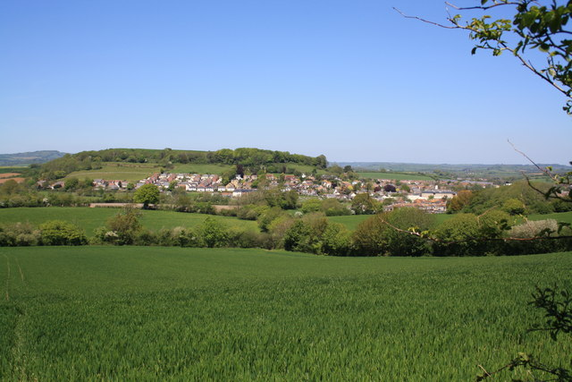 View of Allington Hill from Broad Lane