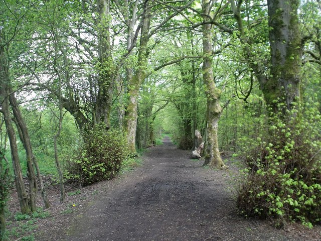 Cumbernauld, Ravenswood Local Nature Reserve [11]