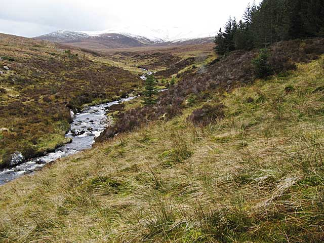 Allt a'Gharbh Bhaid enters Garbat forest