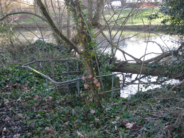 The Binsbrook joins the River Leam