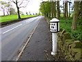SJ9955 : Leek, milepost by Mike Faherty