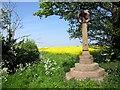 SJ4665 : Monument at Cotton Edmunds by Jeff Buck