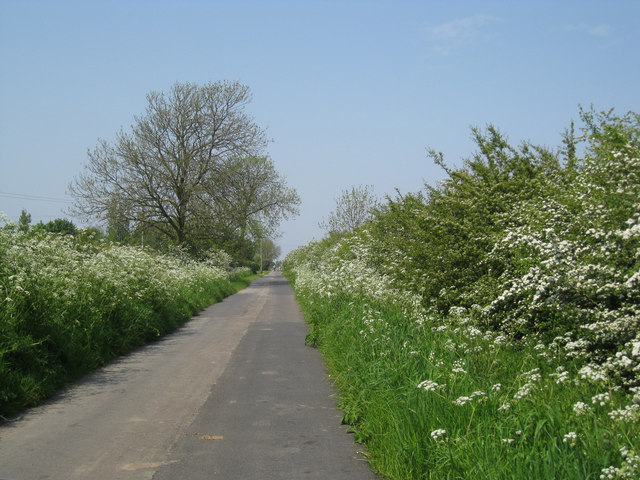 West Marsh Lane