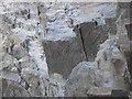 SN5882 : Aberystwyth Grits - worm burrows by Rudi Winter