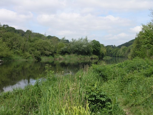 Banks of the river Lee