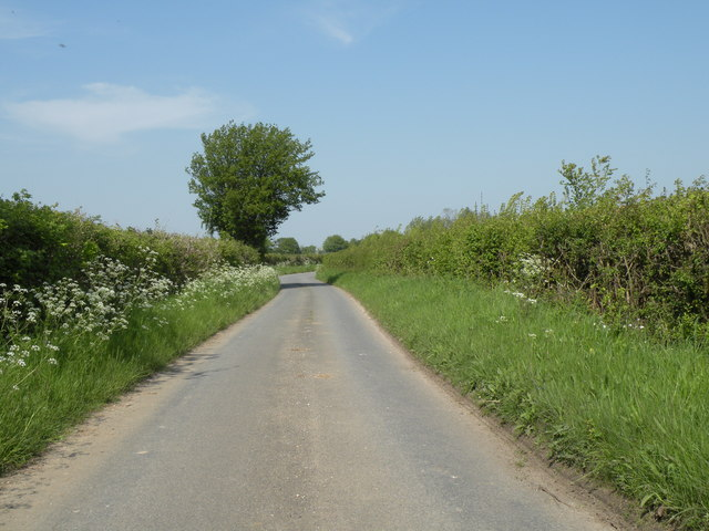 Hartest Lane, heading towards Lawshall