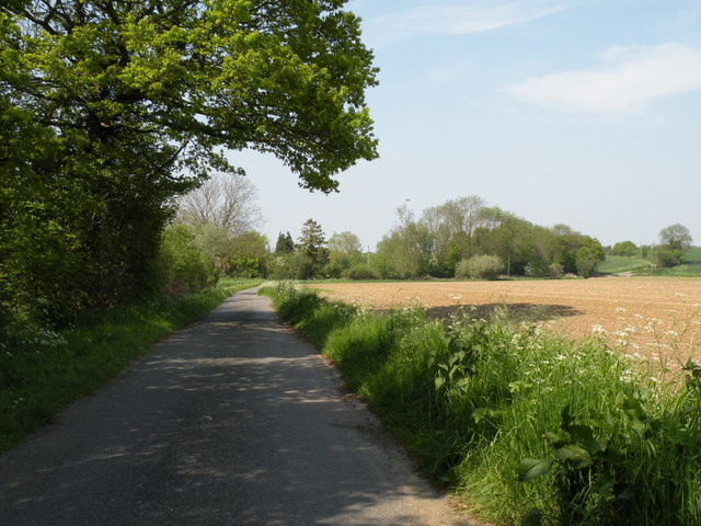 Part of Folly Lane, close to Melon Green