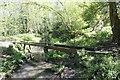 TQ0347 : An old swingbridge by Bill Nicholls