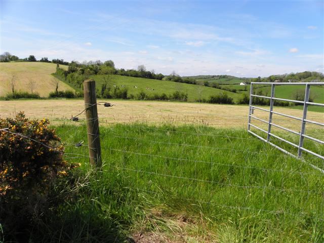 Dunnaluck Townland