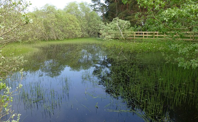 Lily Loch