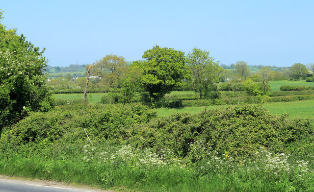 2012 : North east from the A37