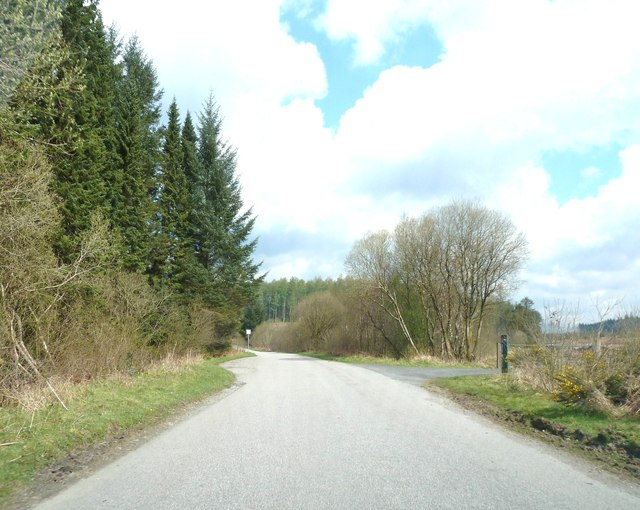 Passing a forestry track
