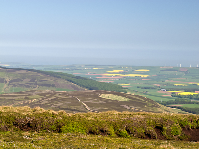 View from Hound Hillock