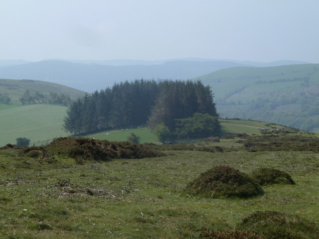 Ridge south of Moel Dod