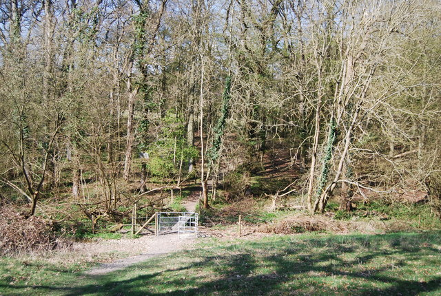 West Sussex Literary Trail enters Bashurst Copse