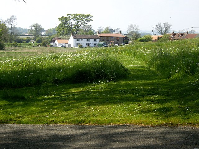 The Green, Headlam