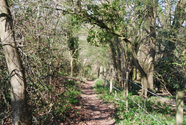 West Sussex Literary Trail, Bashurst Copse