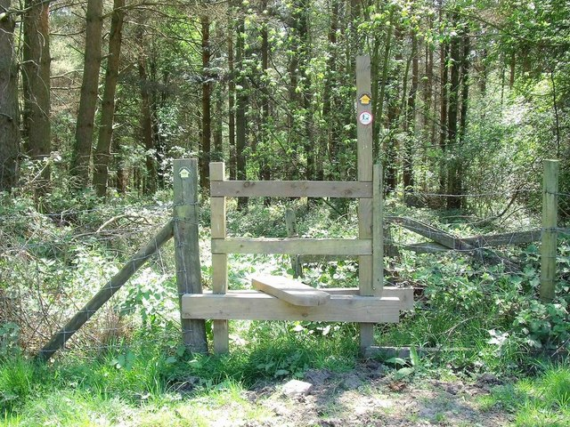 Stile on the path into Key Wood