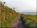 SJ4780 : Lighthouse Road, Hale Head by David Dixon