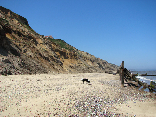 The beach below Trimingham