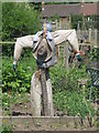 SE2610 : Scarecrow on the Allotments by Dave Pickersgill