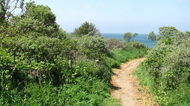 Path to the beach, Gullane