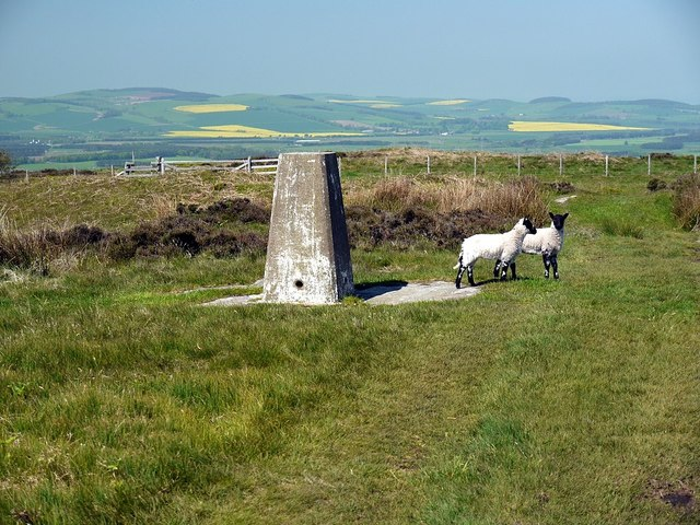Trig point, Dod Law