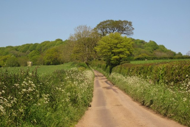 Lane to Hembury