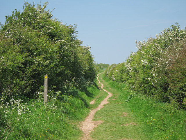 Bridleway to Bostal Hill