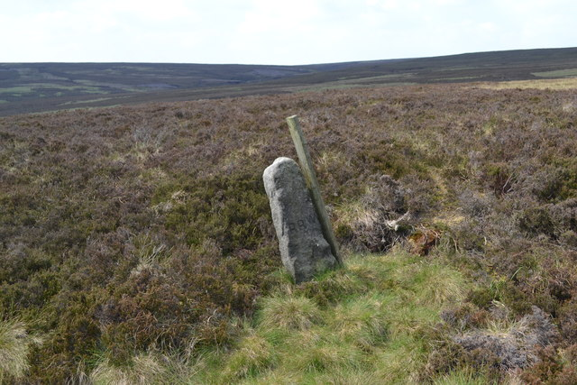 Estate boundary stone east of Cartledge Brook