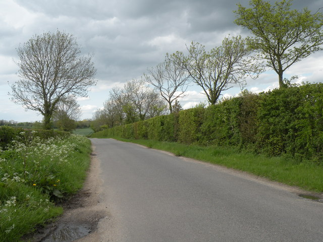 Country Lane, heading towards Ovington