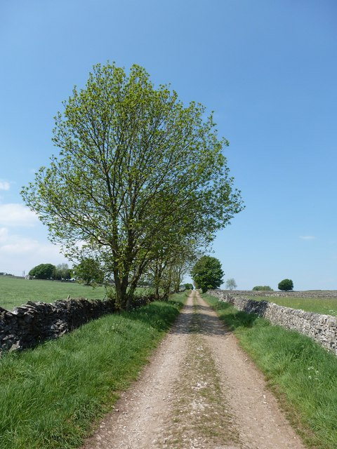 Track to Holmelacy Farm