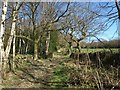 SE2064 : Nidderdale Way at Horse Wood by Derek Harper