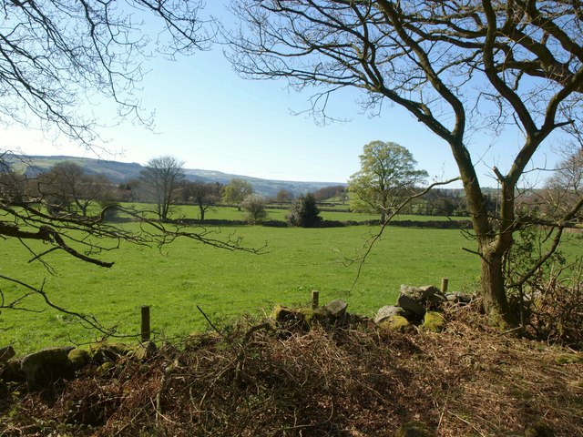 View out of Millstone Wood