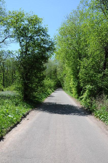 Road in Cwm Coedycerrig