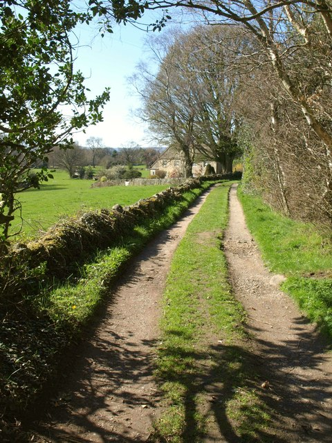 Bridleway past Braisty Woods