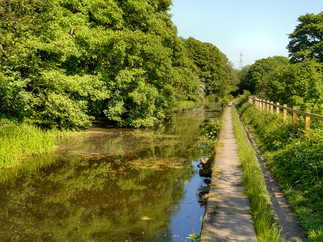 Manchester, Bolton and Bury Canal, Ringley